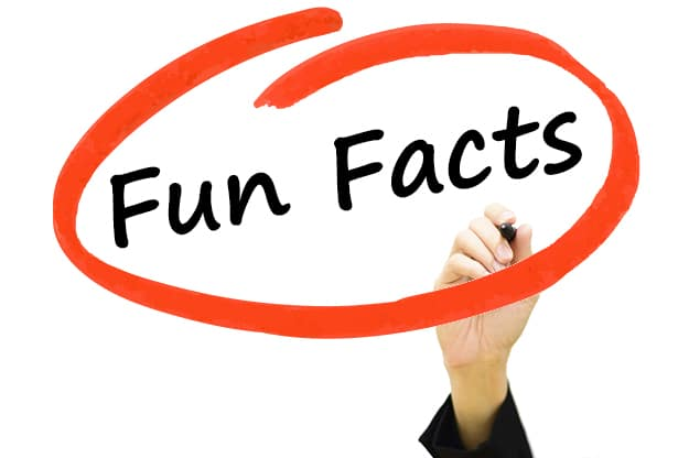 Some great new social media fun facts!